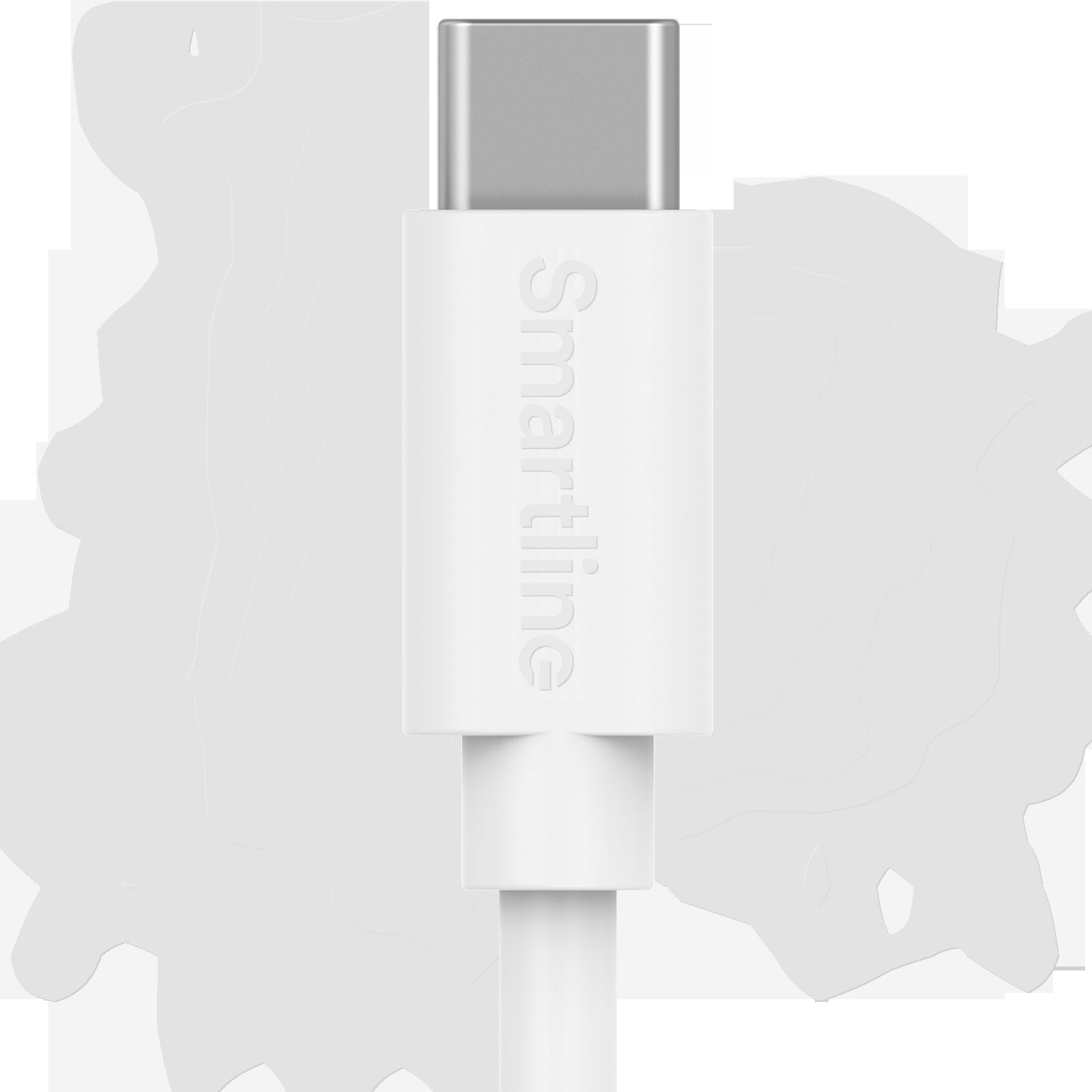 USB-kabel USB-C 1m Vit
